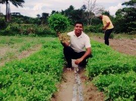 [Projeto Jovem Agricultor fortalece desenvolvimento sustentável]
