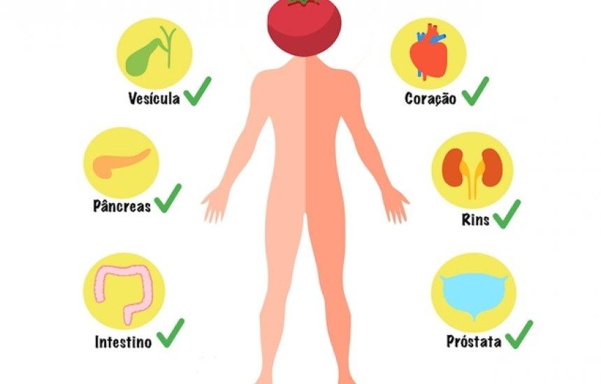 [As sementes de tomate fazem mal à saúde? (mitos e verdades)]