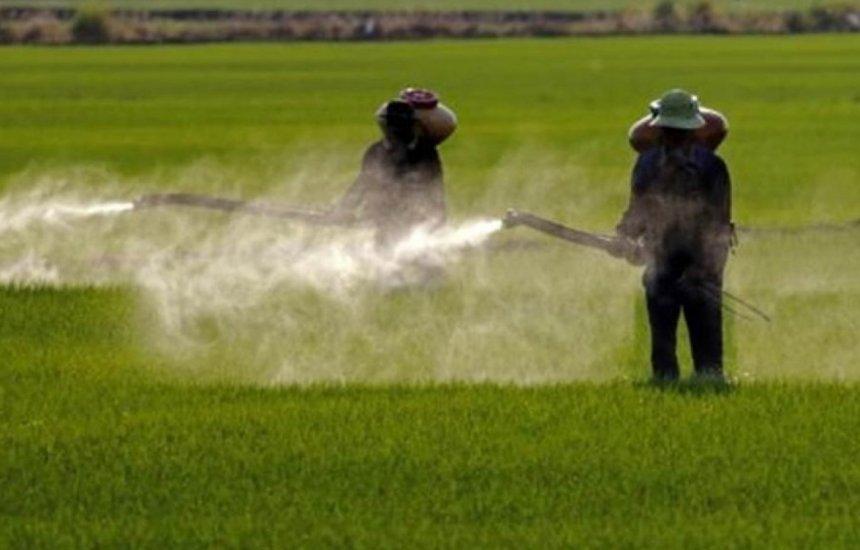 [Governo aprova registro de mais 51 agrotóxicos, totalizando 262 no ano]
