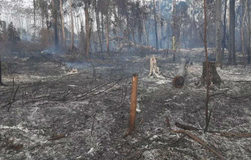 Acre decreta estado de emergência por causa de incêndios florestais