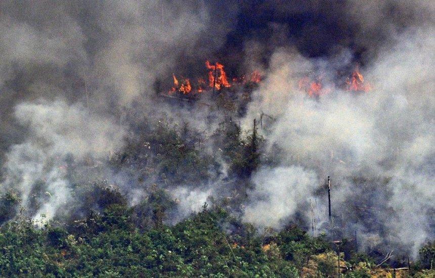 Ministros do Meio Ambiente e da Defesa se reúnem para discutir ações na Amazônia