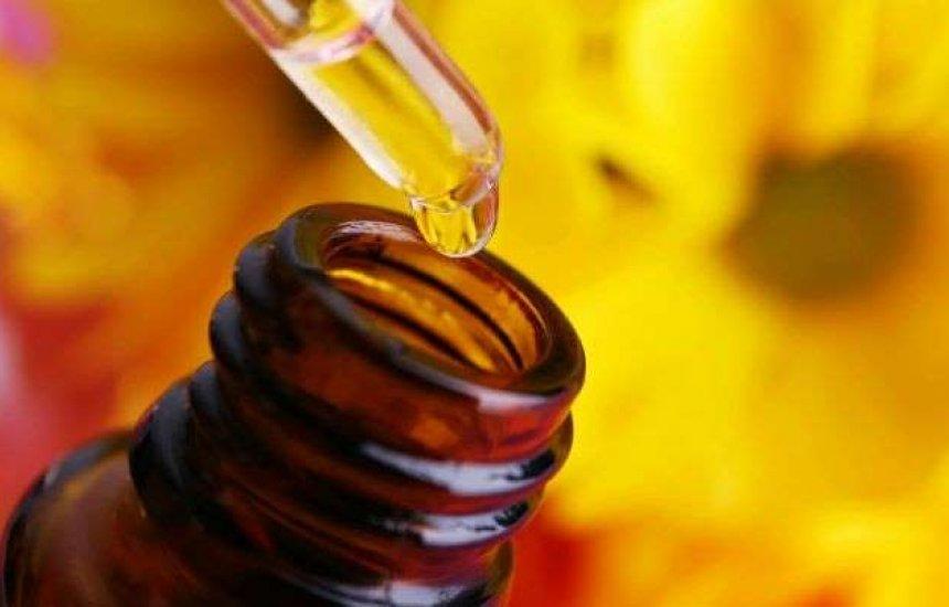 [3 óleos essenciais para o cabelo: diminui oleosidade, caspa e a quebra dos fios]