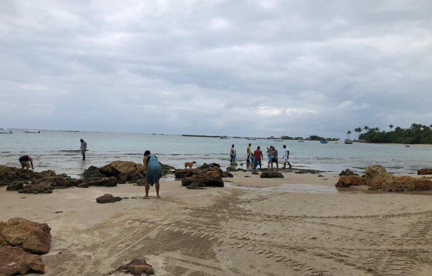 Cairu Óleo atinge Morro de São Paulo, Boipeba e Garapuá; praias são interditadas