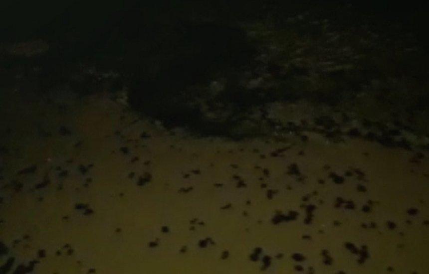 [Novos fragmentos de óleo chegam a Taipu de Fora, no município de Maraú]