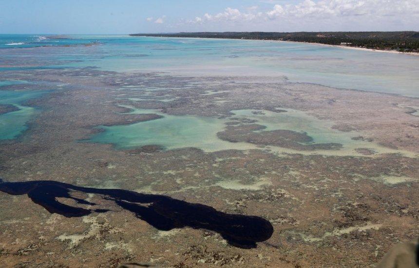 [Ministério informa que peixes de áreas afetadas por óleo estão aptos para consumo]