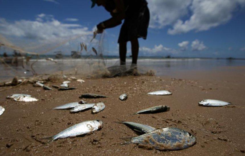 [Pescadores afetados pelo óleo são cadastrados para lista do governo federal]