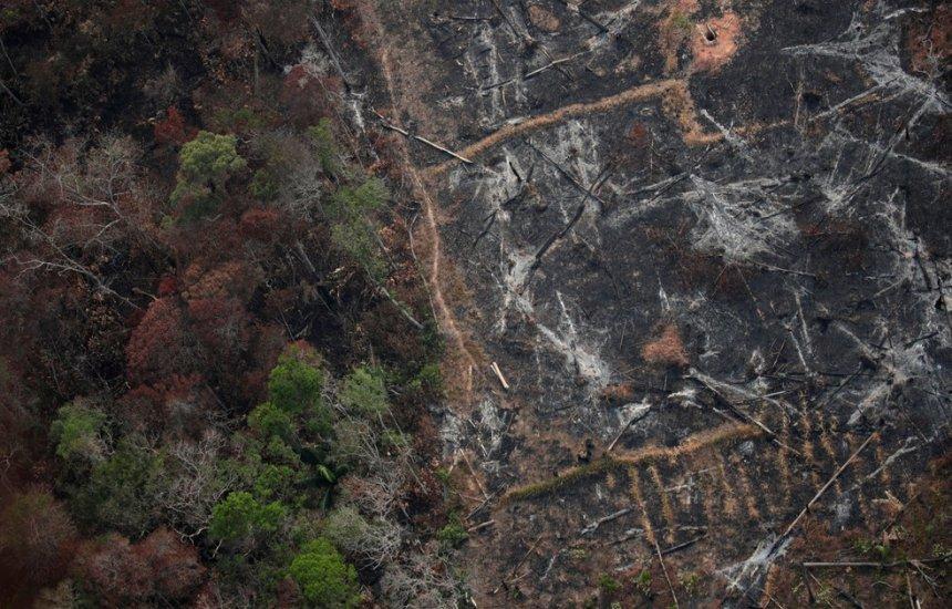 [Desmatamento na Amazônia sobe para quase 10 mil km² em 1 ano, diz Inpe]