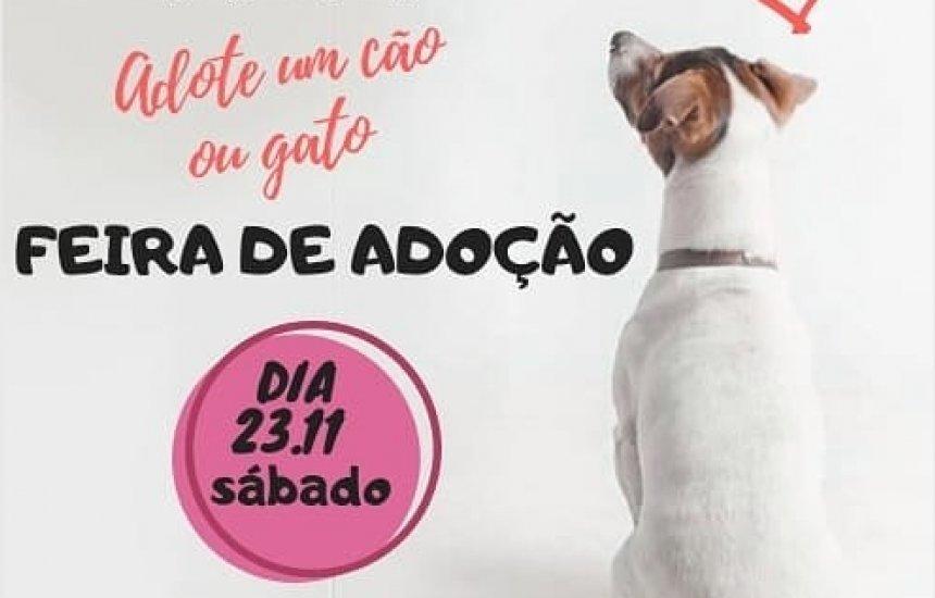 [Feira de adoção de animais acontece neste sábado (23)]