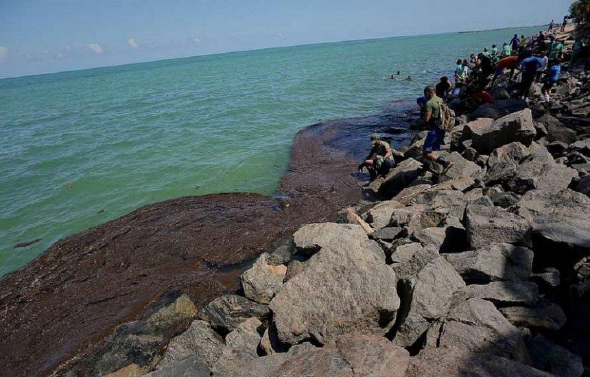 Navio identificado pela Ufal não foi responsável por óleo na costa, diz Marinha