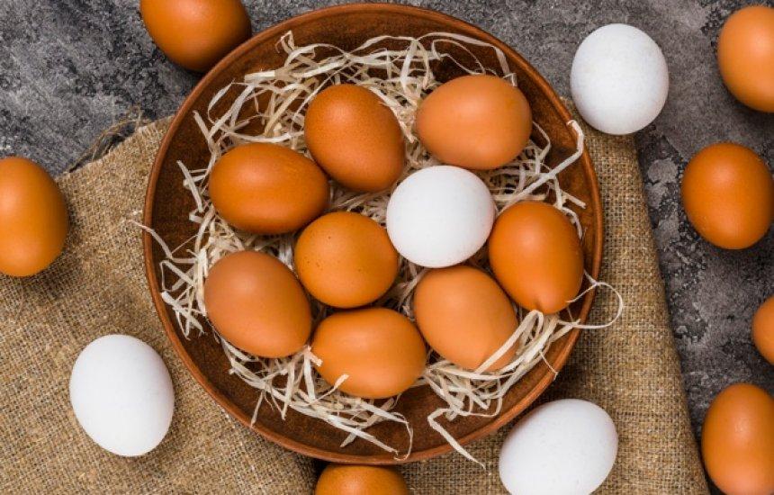 [Produção de ovos de galinha bate novo recorde no país, diz IBGE]