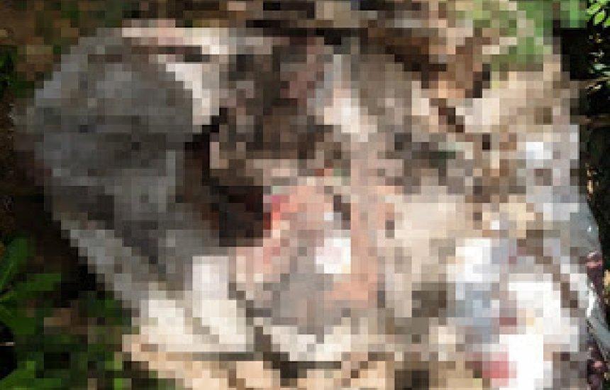 [Quatro corpos são achados em sacos plásticos no bairro de Santo Inácio]