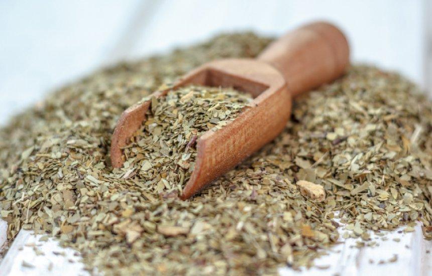 [Benefícios do chá mate vão do emagrecimento até a proteção do coração]