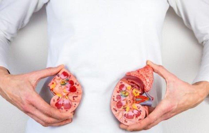 [Xixi saudável: O que comer para cuidar dos rins e evitar pedras]