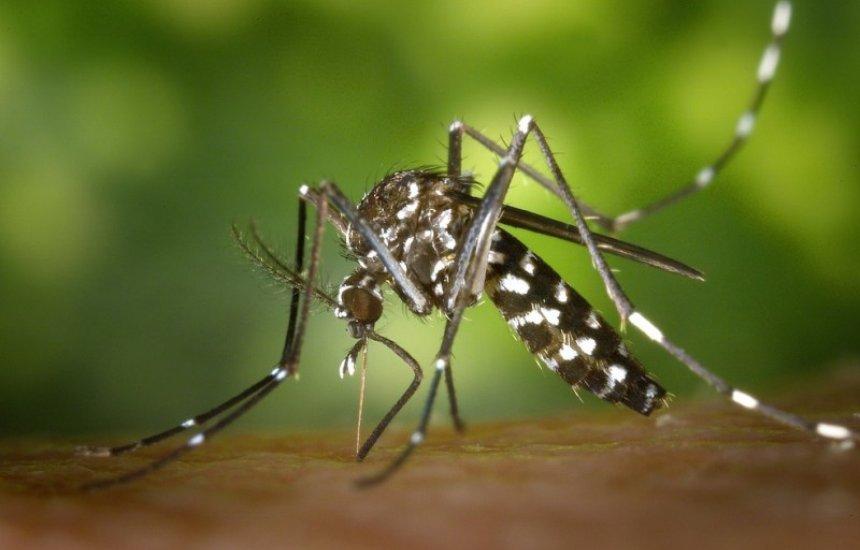 [Morador de Arembepe alerta para casos de dengue no bairro Caraúna]