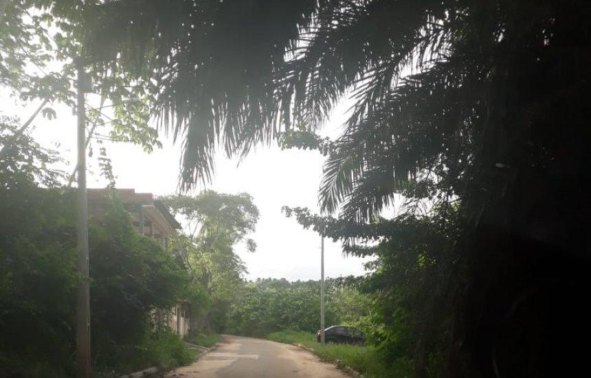 [Leitor pede poda de árvores na região da Mesqueira, em Coqueiro de Arembepe]