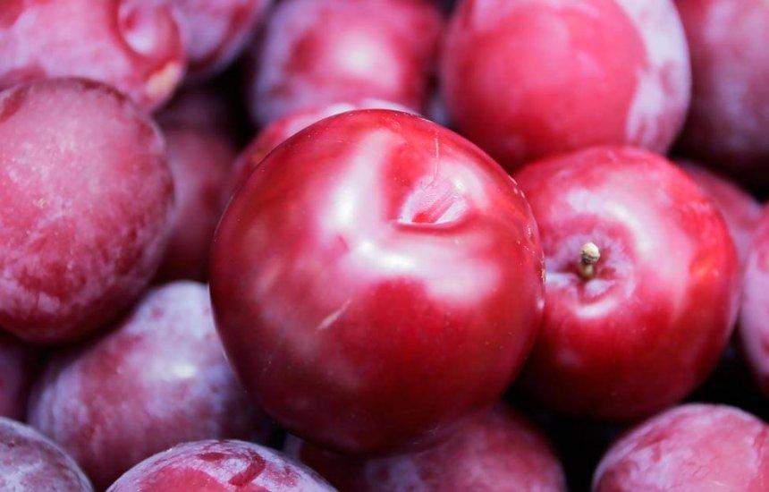 [10 benefícios da ameixa e os principais tipos dessa fruta maravilhosa]