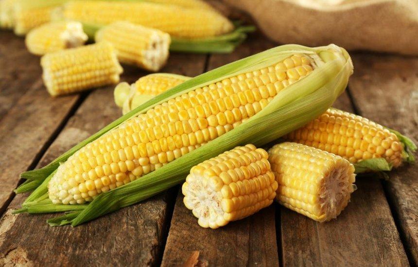 Milho poderoso: saiba os benefícios deste alimento tão popular