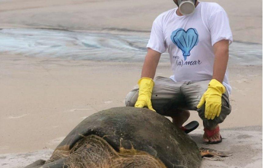 [Tartaruga marinha com 1,3 metro e mais de 80 kg é resgatada após encalhar em praia]