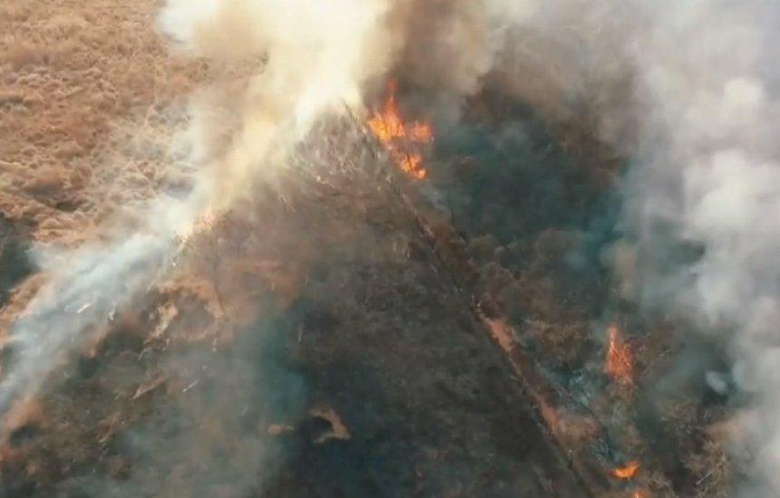 [Incêndio destrói 90 hectares de vegetação em Guanambi]