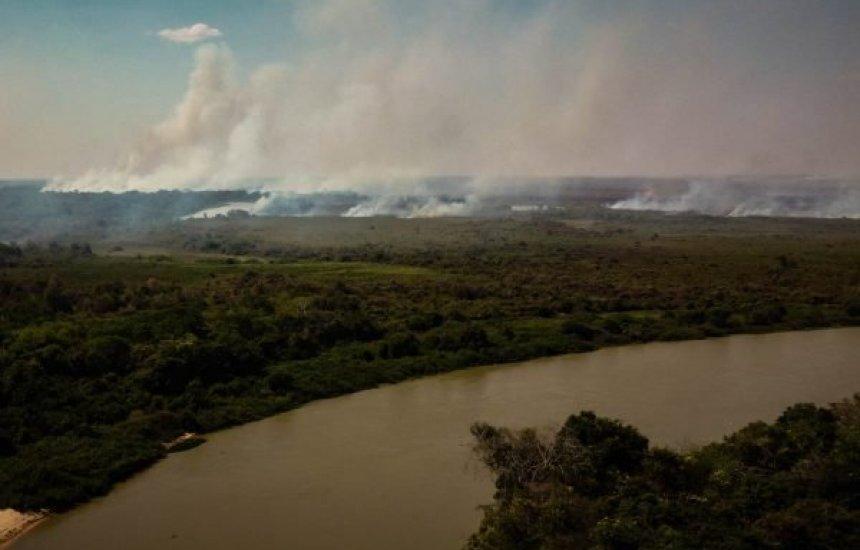 [Cerca de 50 espécies de peixes são achadas mortas em rio do Pantanal]