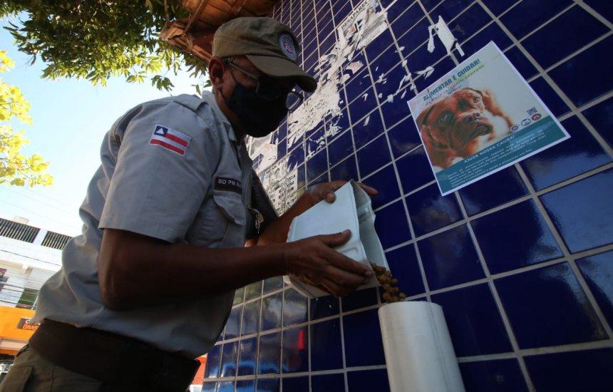 [Comedouros comunitários para animais de rua são instalados por policiais em Dias d'Ávila]