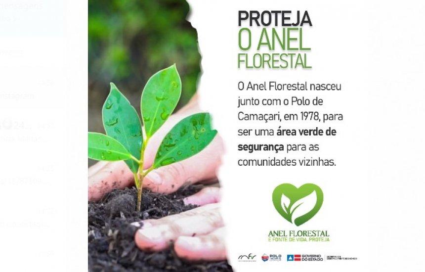 [O Anel Florestal tem a finalidade de ser uma área arborizada de segurança entre as indústrias e as comunidades vizinhas. Clique aqui e conheça mais!!]